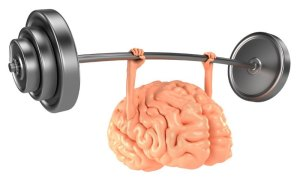 cerveau musclé
